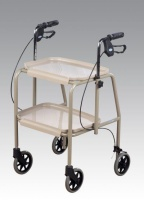 Adjustable Height Braked Walker Trolley